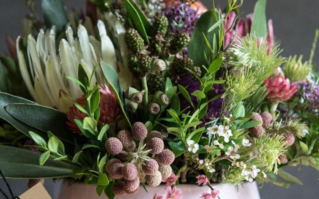 Protea Pot   Peninsula Wild Flower